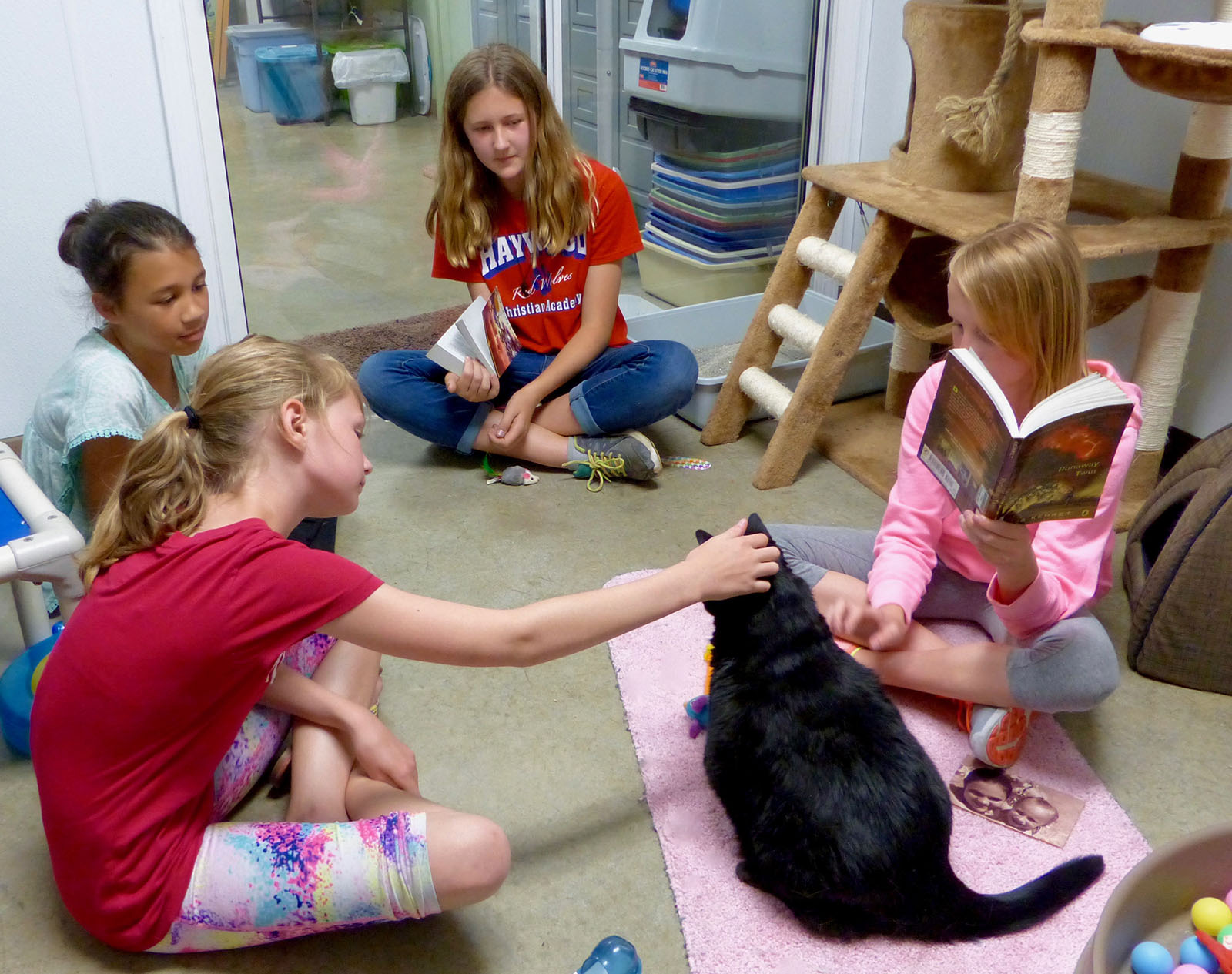 Reading-to-animals-cats-4-16